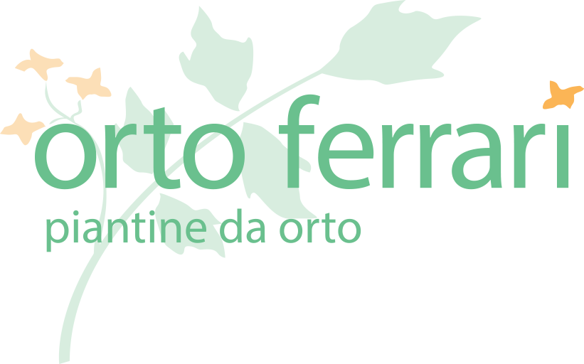 OrtoFerrari